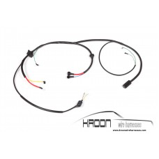 Wire harness for engine (custom)